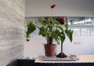 dhbelleza-espacios-home-2